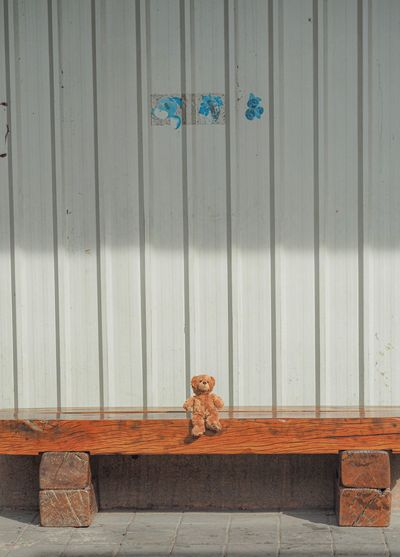 Teddy bear sitting on a wooden table No People Wood - Material Day Animal Feline Wall - Building Feature Cat Animal Themes Built Structure Architecture Mammal Domestic Vertebrate Entrance Closed Domestic Cat Domestic Animals Door Building Exterior Pets