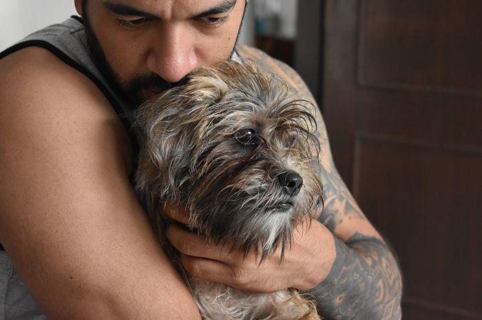 EyeEm Selects Love Dogs Dog Pet Friendship Tattoo Sofi Argentina