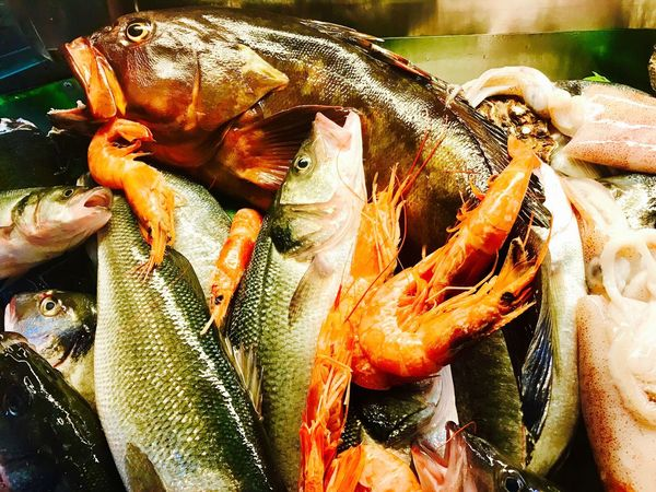 Pesce misto Seafood Fish Freshness Food And Drink Healthy Eating Food Raw Food Catch Of Fish Close-up Market For Sale Choice Fish Market Outdoors Day No People