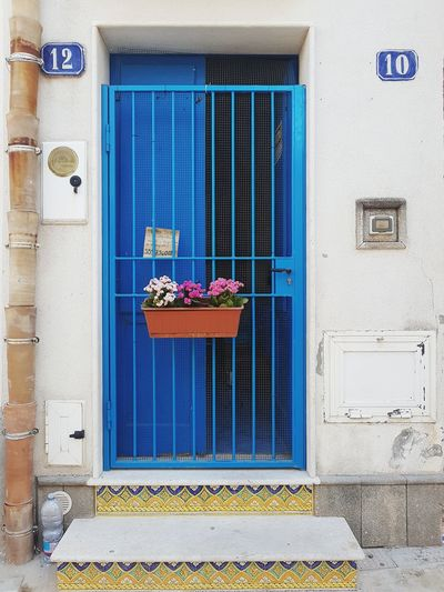 Decoration Ornaments Blue Flowers Streetphotography Window Box Flower Doorway Window Door Architecture Building Exterior Built Structure Entryway Closed Door Entry Entrance Gate Front Door