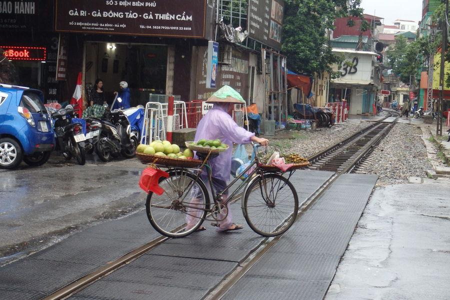 Trip in Hanoi, august 2015 August 2015. Bicycle Bike Chinese Hat City City Life Hanoi City Hanoi Vietnam  Hat Land Vehicle Mode Of Transport Rain Raincover Riding Road Street Train Tracks Transportation Vietnam