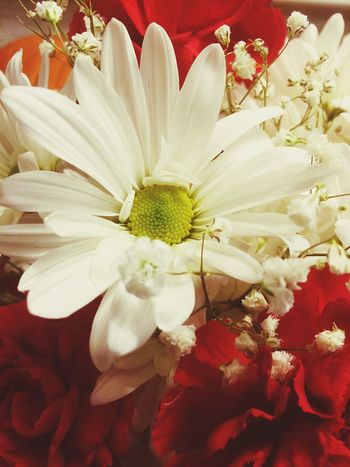 A flower is no flower without its petals