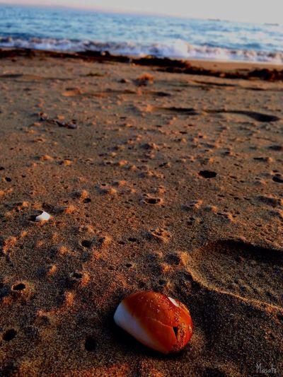 Enjoying The Sun Sea Relaxing EyeEm Best Shots