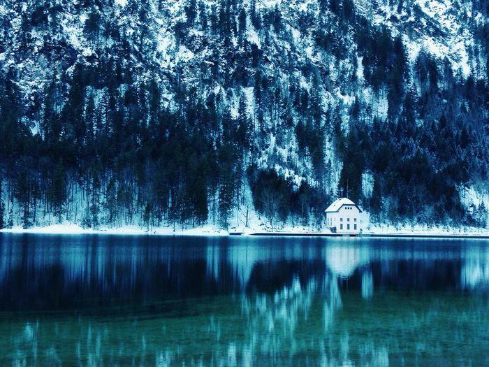 Winter wonderland. First Eyeem Photo