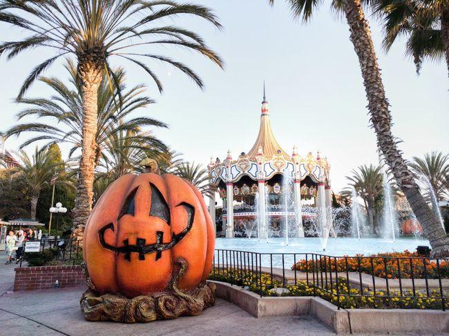 Happy Halloween Halloween Pumpkin Carousel Festival Fall Tiny Moon Trick Or Treat Amusement Park