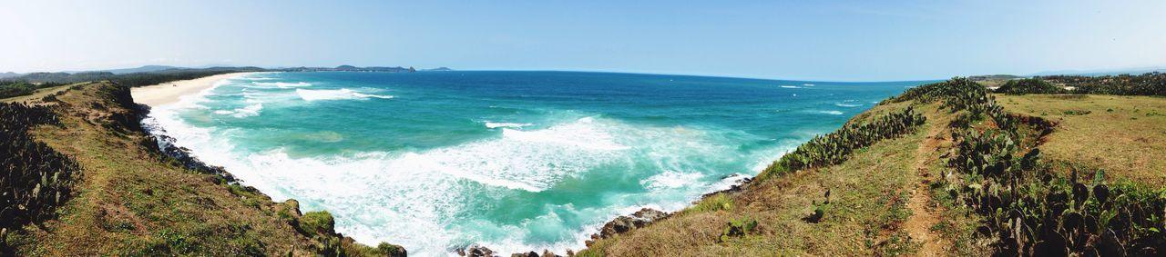 Bai Xep Sea Ocean Vietnam Phuyen Hoa Vàng Trên Cỏ Xanh