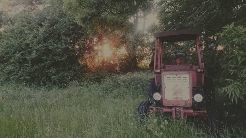 Tractor Sunset Beautiful Nature Trees Just Something First Eyeem Photo Planet Earth Mood Of The Day Different Perspective Nature Day Just Chilling Everyday Emotions No People Sun