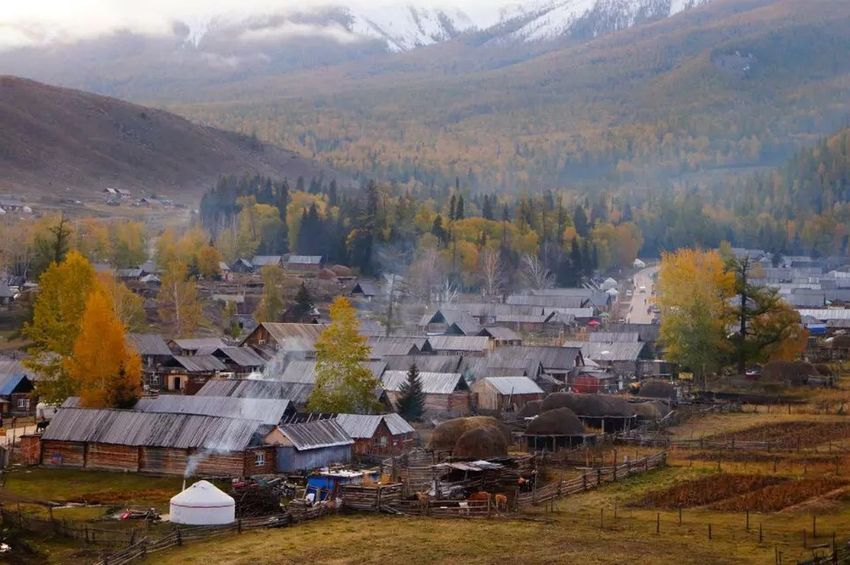 China xinjiang Autumn Nature Scenics Day High Angle View Tree Landscape No People