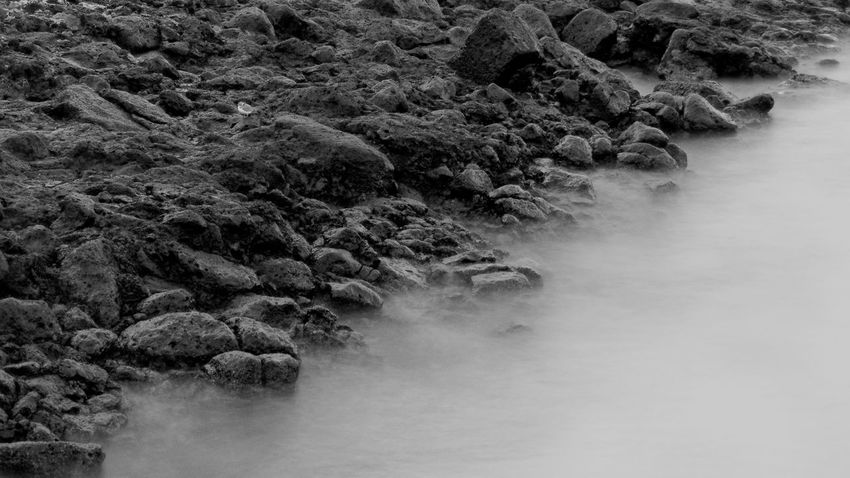 Lanzarote Canarias Islascanarias Canaryislands Photography Photo Fotografia Foto SPAIN España Pictures Landscape Long Exposure Blackandwhite Monochrome Black Ocean Seascape Water Sea Shore White Nature No People Outdoors Beauty In Nature Tree Sea Water Scenics