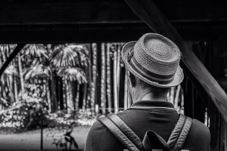 Portrait Portraiture Dad Black And White Bnw Monochrome Light And Shadow Perspective Artphotography Composition From My Point Of View EyeEm Best Shots Nature Nature_collection Japonesegarden Garden Bamboo Eyeemphoto France
