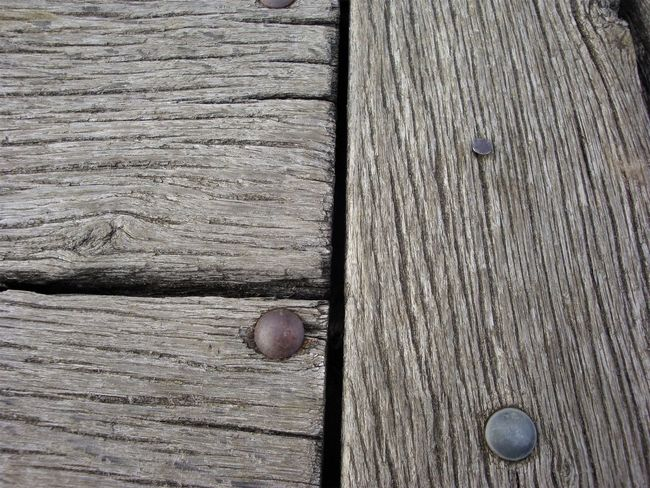 Background Backgrounds Close-up Day No People Outdoors Wodden Texture Wood - Material