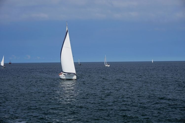 Adventure Aquatic Sport Competition Competitive Sport Day Horizon Over Water Nautical Vessel No People Outdoors Recreational Pursuit Regatta Sailboat Sailing Sailing Ship Sea Sky Sport Sports Race Transportation Vacations Water Yacht Yachting