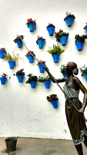 High Angle View No People Indoors  Day Córdoba Tipicalspanish Andalucía Lifestyles Tranquility Outdoors One Person Travel Destinations Tranquil Scene Agriculture Only Women Old Buildings Women Girl Old Town SPAIN Road Landscape Beauty In Nature Flowers Blue