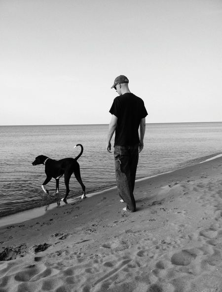Dog Beach Sand One Man Only Pets One Person Full Length One Animal People Domestic Animals Outdoors Day Great Dane Man And His Dog Great Lakes EyeEmNewHere EyeEm Selects Breathing Space Pet Portraits