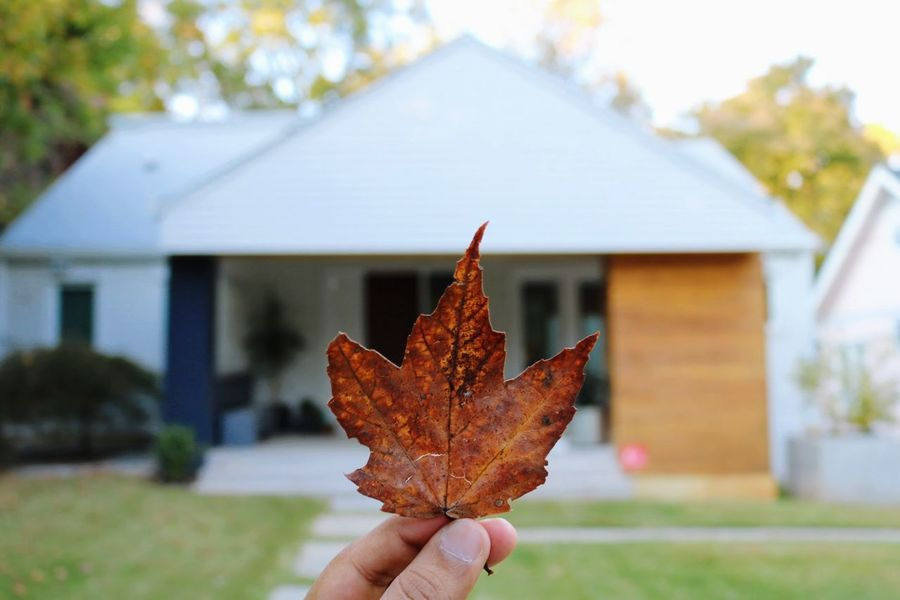 Autumn Leaf Maple Leaf Change Human Hand Outdoors Focus On Foreground Nature Holding One Person Lifestyles Close-up Fall Colors Fall Beauty Igers Nature Home Canont6i Canonphotography Dslrclicks DSLR Beauty In Nature VSCO Vscogood Vscolife EyeEmNewHere The Architect - 2017 EyeEm Awards