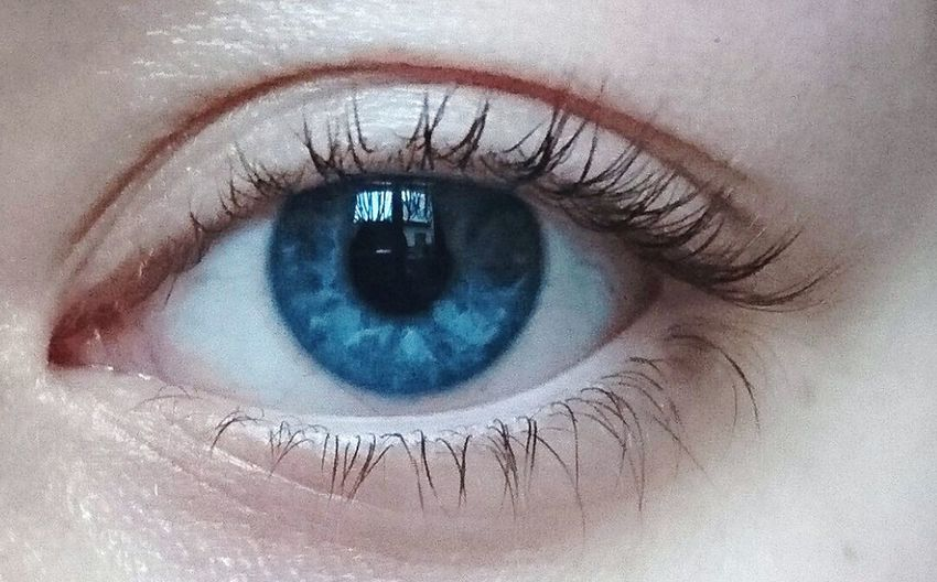 Eye Eyelash Blue Eyeball Divine Beauty