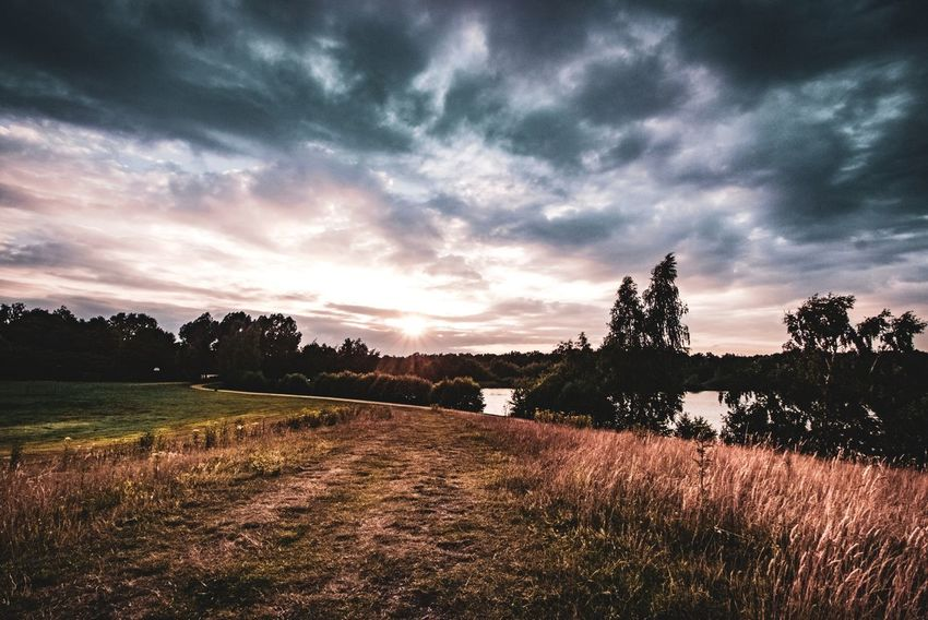 In Thoughts With You Dramatic Scene Scenics Scenery Nature Landscape Day Sunset Enjoying Life EyeEm Best Shots EyeEm Nature Lover Tree Sunset Agriculture Field Rural Scene Sky Landscape Grass Cloud - Sky Dramatic Sky Atmospheric Mood Moody Sky