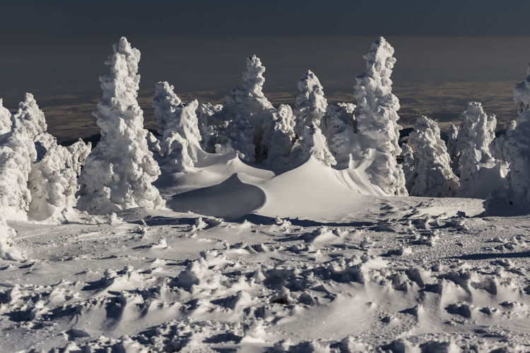 winter in the Apuseni Mountains, Romania Trees Beauty In Nature Cold Cold Temperature Day Iceberg Landscape Mountains Nature No People Outdoors Scenics Sky Snow Tranquil Scene Tranquility Winter