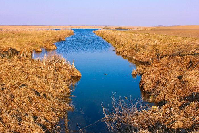 Nature Spring весна Природа беларусь Belarus река Sky Nice