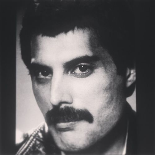 Freddie Mercury Too Much goodmythalack