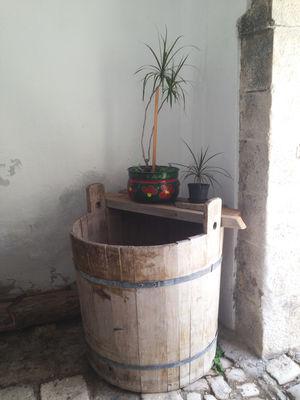 Potted plants on a wooden barrel Barrel Botany Decor Decorative Flora Flower Pot Growth House Plant Minimalism Plant Plants Potted Plant Potted Plants Simplicity Wall - Building Feature Wooden