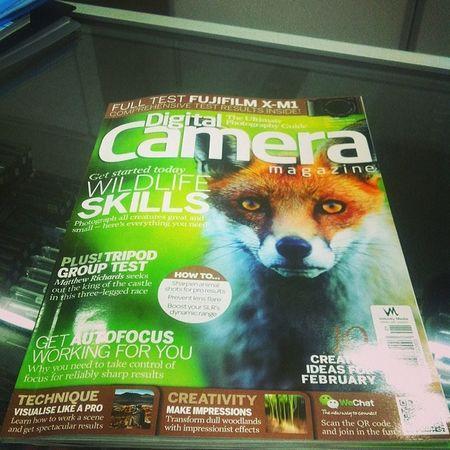 What does the fox say's ! Dpatkan majalah Digital Camera edisi February 2014 Digitalcamera Nikon Photography
