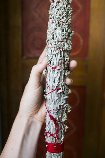 New house, new sage Beautiful Cleansing Close-up Cropped Decor Decoration Focus On Foreground Hand Herb Herbs Holding House Houses Human Finger Leisure Activity Lifestyles Natural Nature Part Of Person Plants Sage Saging Selective Focus Unrecognizable Person