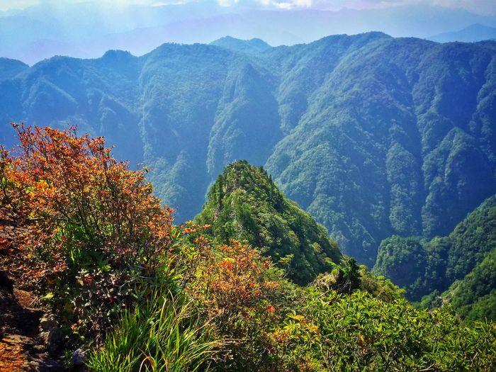 大蛇嵓。 Nature EyeEm Nature Lover Highlands Autumn Autumn Colors Mountains Sanctuary  大台ケ原 大蛇嵓