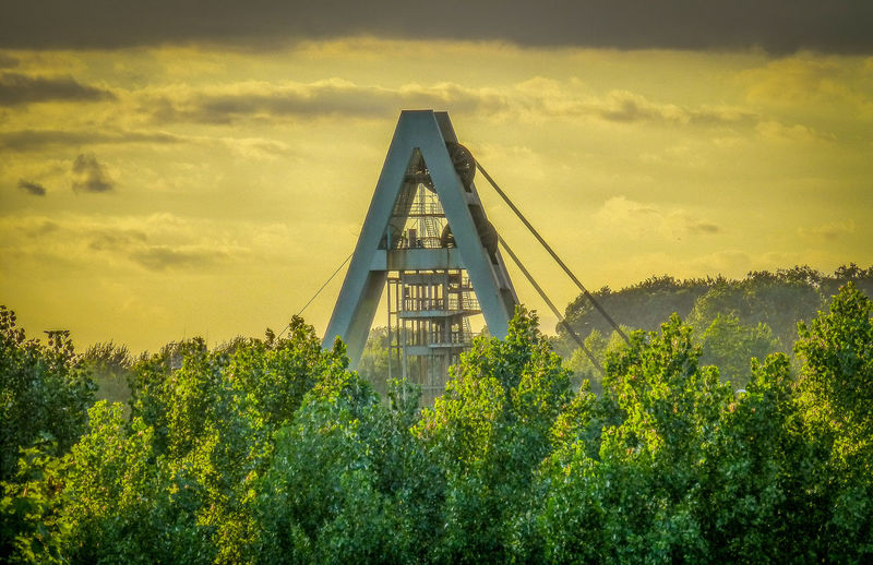 Auguste Victoria Schacht 8 Tree Sunset Industry Yellow Industrial Bergbau Mining Industry Architecture Built Structure Coal Mine Coal Mining Digging Schacht