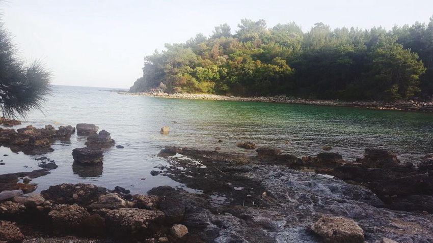 Water Tree Rock - Object Nature Outdoors Beauty In Nature Sea Day Scenics Beach Tatilkafasi Gezelimgörelim Yoldangeçerken Manzara Dediğin  EyeEm Best Shots Deniz Holiday Faselis No People Phaselis Vacations Sky