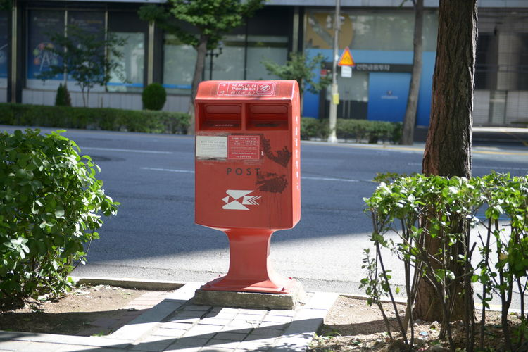 Plant Nature Day Mailbox Public Mailbox Sunlight Mail Communication Footpath No People Architecture Growth Outdoors City Built Structure Red Text Street Flower Flowering Plant Correspondence Post Box