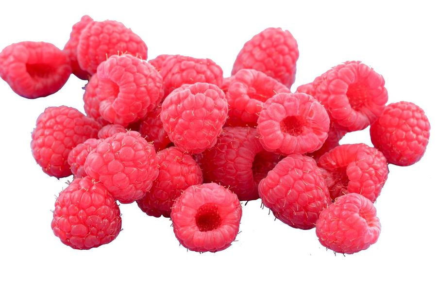 Red White Background Cut Out Nature No People Pink Color Fruit Close-up Beauty In Nature Healthy Eating Flower Freshness Day Raspberry Raspberries Freigestellt
