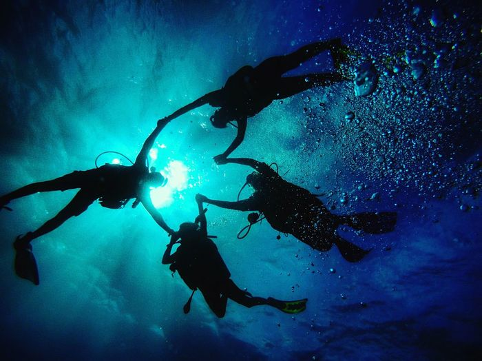 Low angle view of people scuba diving in sea