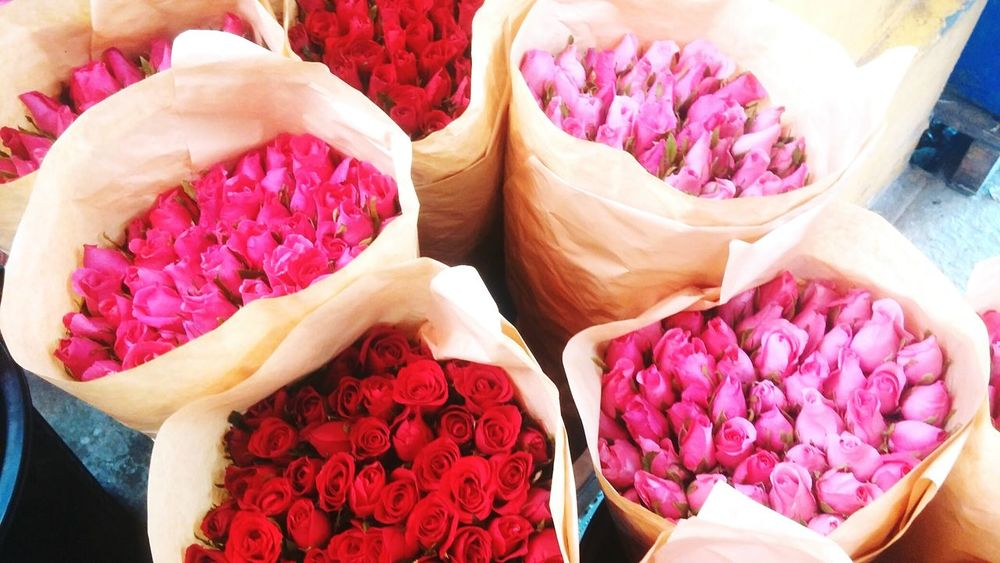 Flower Freshness Retail  Red Market Business Finance And Industry For Sale Market Stall Human Hand Cultures Close-up Only Women People Indoors  Human Body Part Day Adults Only Adult