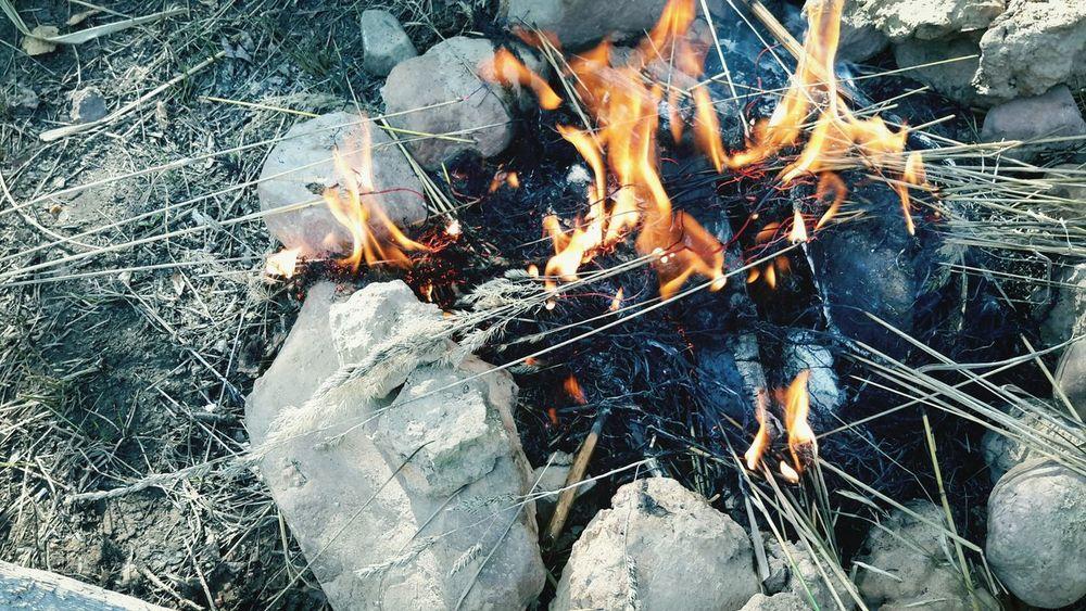 Nature Fire EyeEm Nature Lover Camp Fire