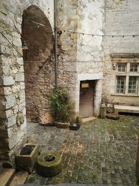 Entrance Cours Intérieure Jardins Architecture Plant Histoire Palais Comte
