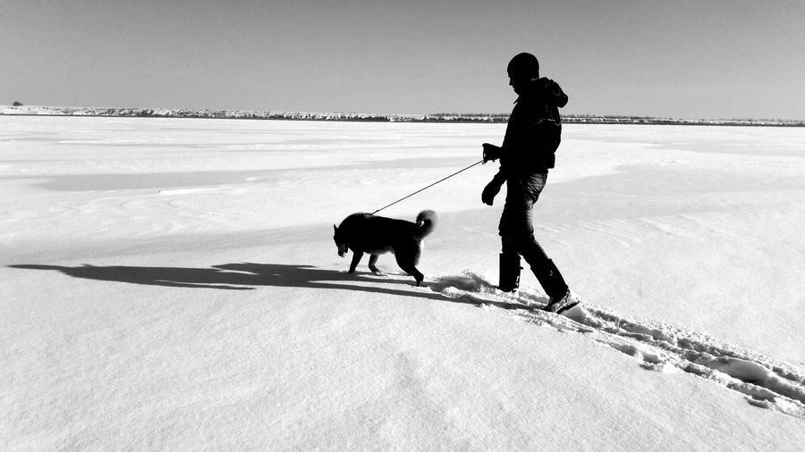 Man with dog walking outdoors