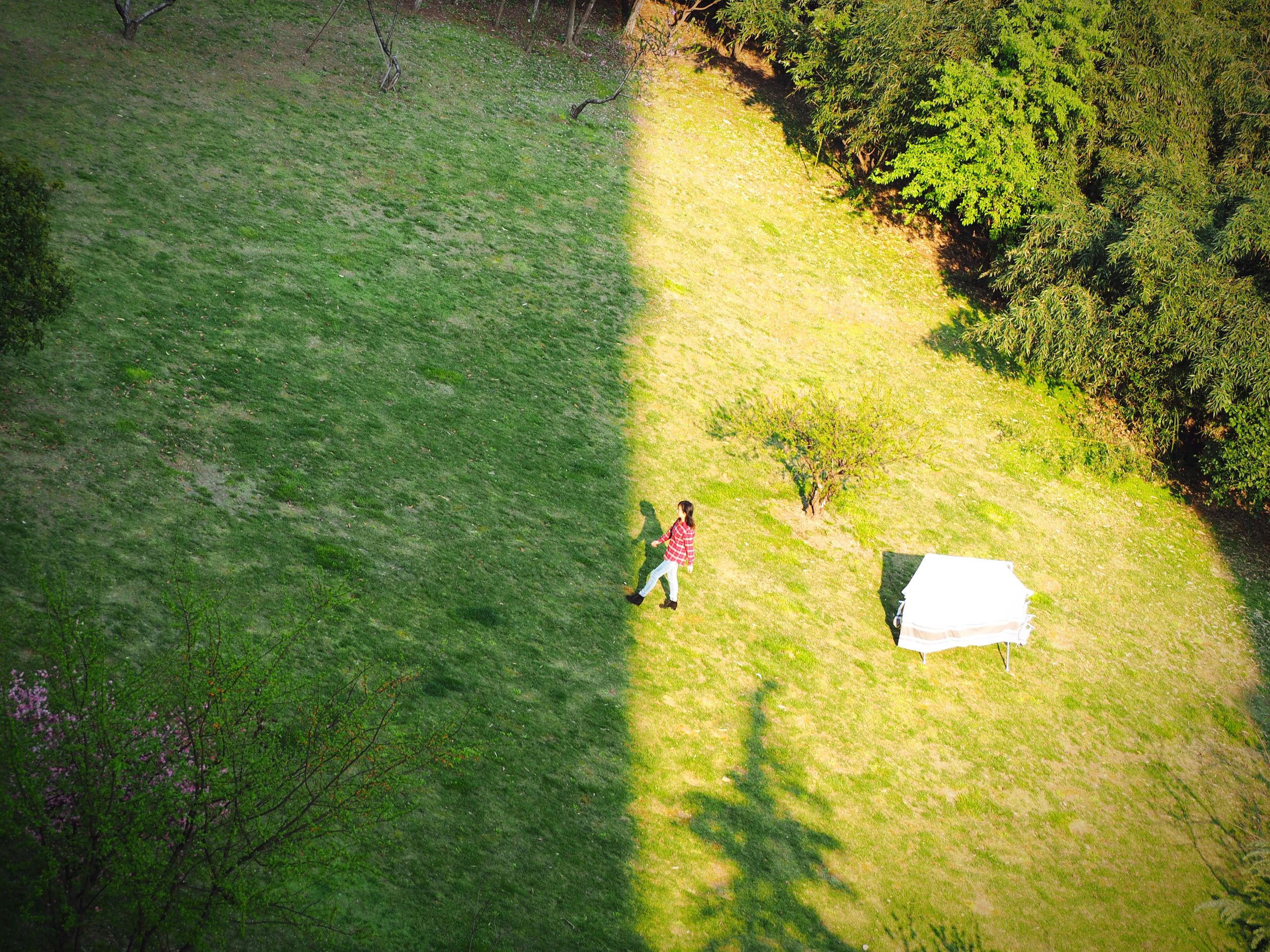 grass, green color, high angle view, leisure activity, lifestyles, grassy, men, field, shadow, growth, person, sunlight, nature, plant, day, tree, tranquility