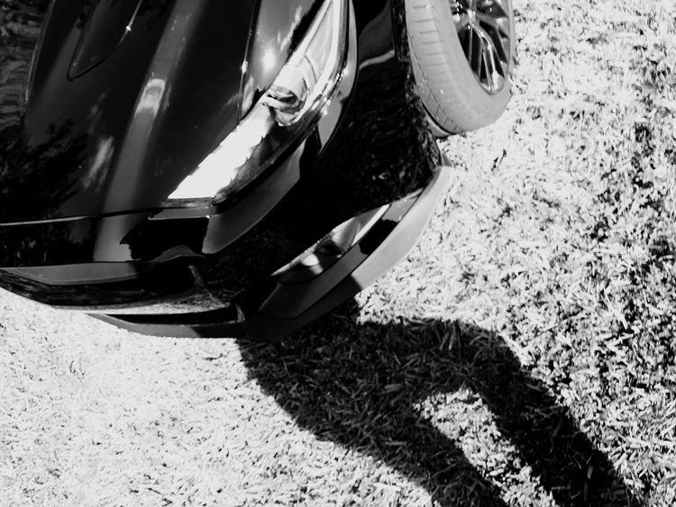 The Drive Shadow Blackandwhite Accidental Shot