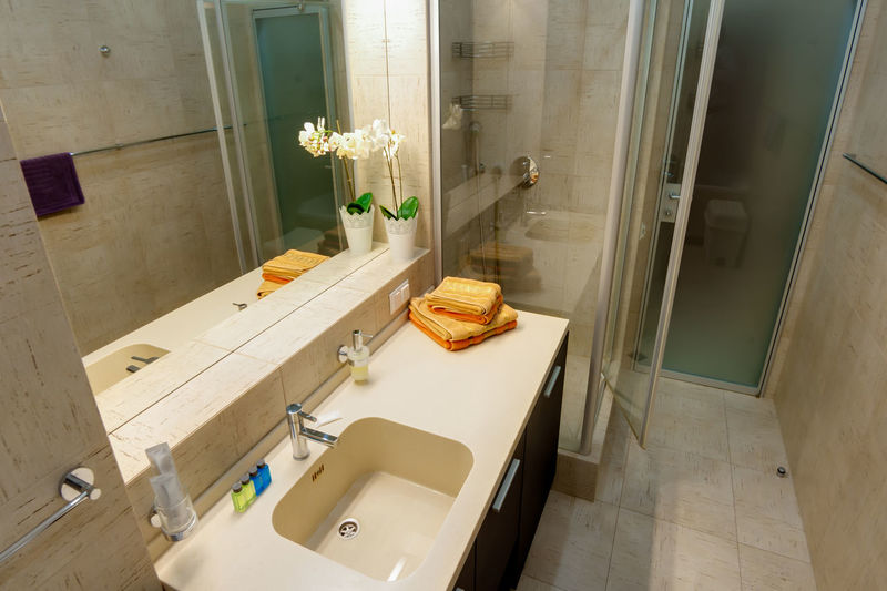 Indoors  Domestic Room Bathroom Domestic Bathroom Home Interior Flooring Flower No People Hygiene Sink Mirror Home High Angle View Flowering Plant Tile Household Equipment Plant Nature Faucet Absence Tiled Floor Luxury