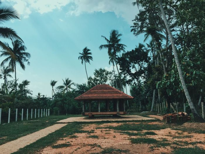Gazebo by palm trees on field against sky