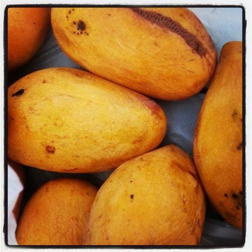 Mango has become my new favorite fruit. Mangomadness Newfavfruit Bestfruit Thanksphils Havingfun Omnomnom Lovinit Sweet Ripemango