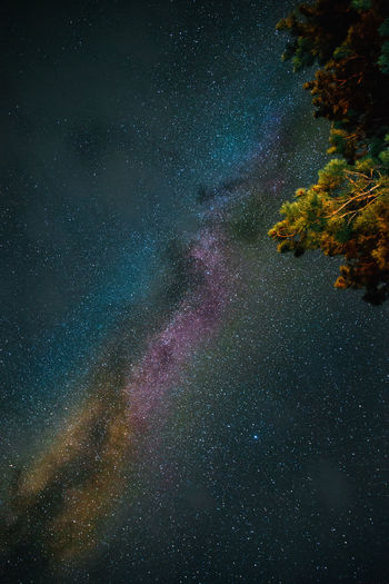 Low angle view of milky way at night