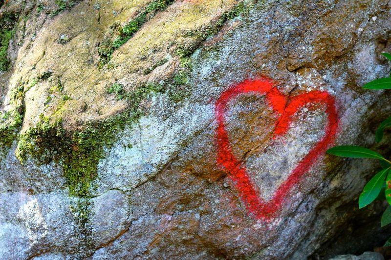 Love. Hiking Hike Trail Nature Outdoors Swatara Pennsylvania Heart