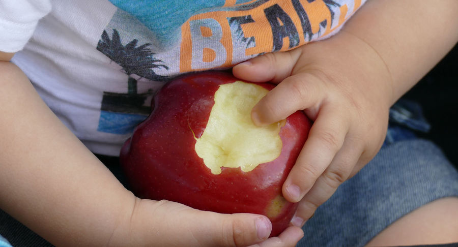 Apple Apple With Kid Childhood Close-up Day Food Food And Drink Freshness Fruit Healthy Eating Holding Human Body Part Human Finger Human Hand Indoors  Kid Hand  Leisure Activity Lifestyles Midsection One Person People Ready-to-eat Real People