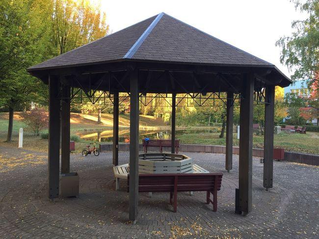 Herbstlicher Spaziergang Träumen Im Herbst Herbst Spaziergang Durch Den Herbst. Gazebo Built Structure Park Seat Tree Architecture Nature Outdoors Day No People