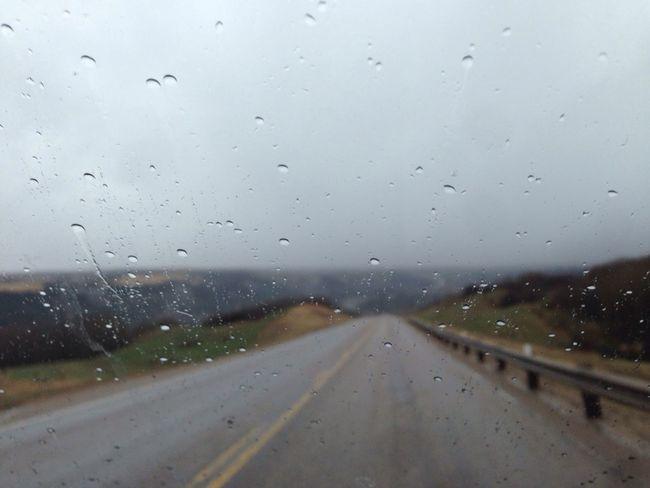 Rain Drops Rainy Day