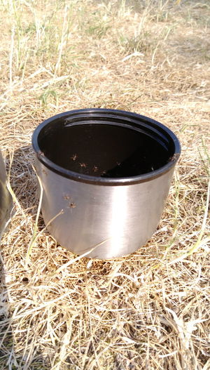 Cup Of Coffee Calmness Sunny Day Outdoor Photography Meadow Life StillLifePhotography Ants Ants Attack Cup Picnic Picknick Nature Ameisen Trinkbecher Trockenheit Trockene Landschaft Can Aluminum Container Drum - Container Close-up