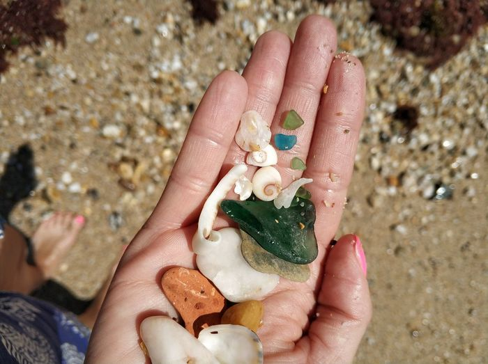 Close-Up Of Woman Hand Holding Shells And Pebbles At Beach During Sunny Day