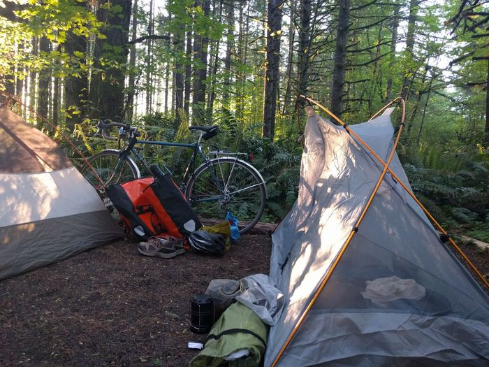 Bicycling Bike Camping Bikepacking Camp Campsite Forest Green Color Tent Travel Destinations Trees